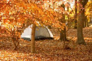 秋冬キャンプの防寒対策で忘れがちな小物防寒アイテム